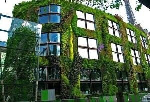 Vườn đứng giải pháp kiến trúc xanh