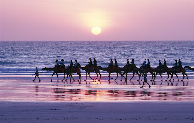 Sunset camel ride, Broome