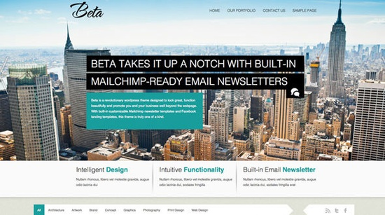 Beta – HTML5 WordPress Theme With Built-in Email Newsletter