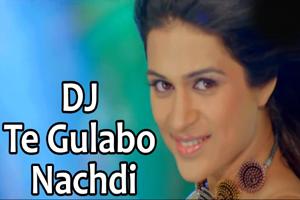 Dj Te Gulabo Nachdi