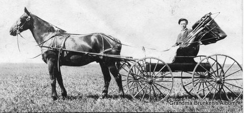 Chris Petersen with Horse and Buggy