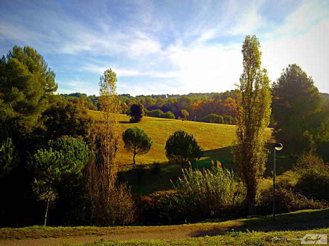 campo-paisaje-otoñal
