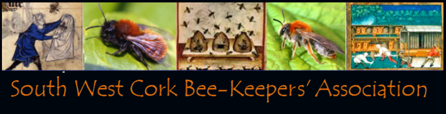 South West Cork Bees