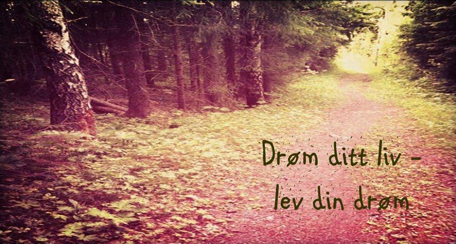 Drøm ditt liv -lev din drøm