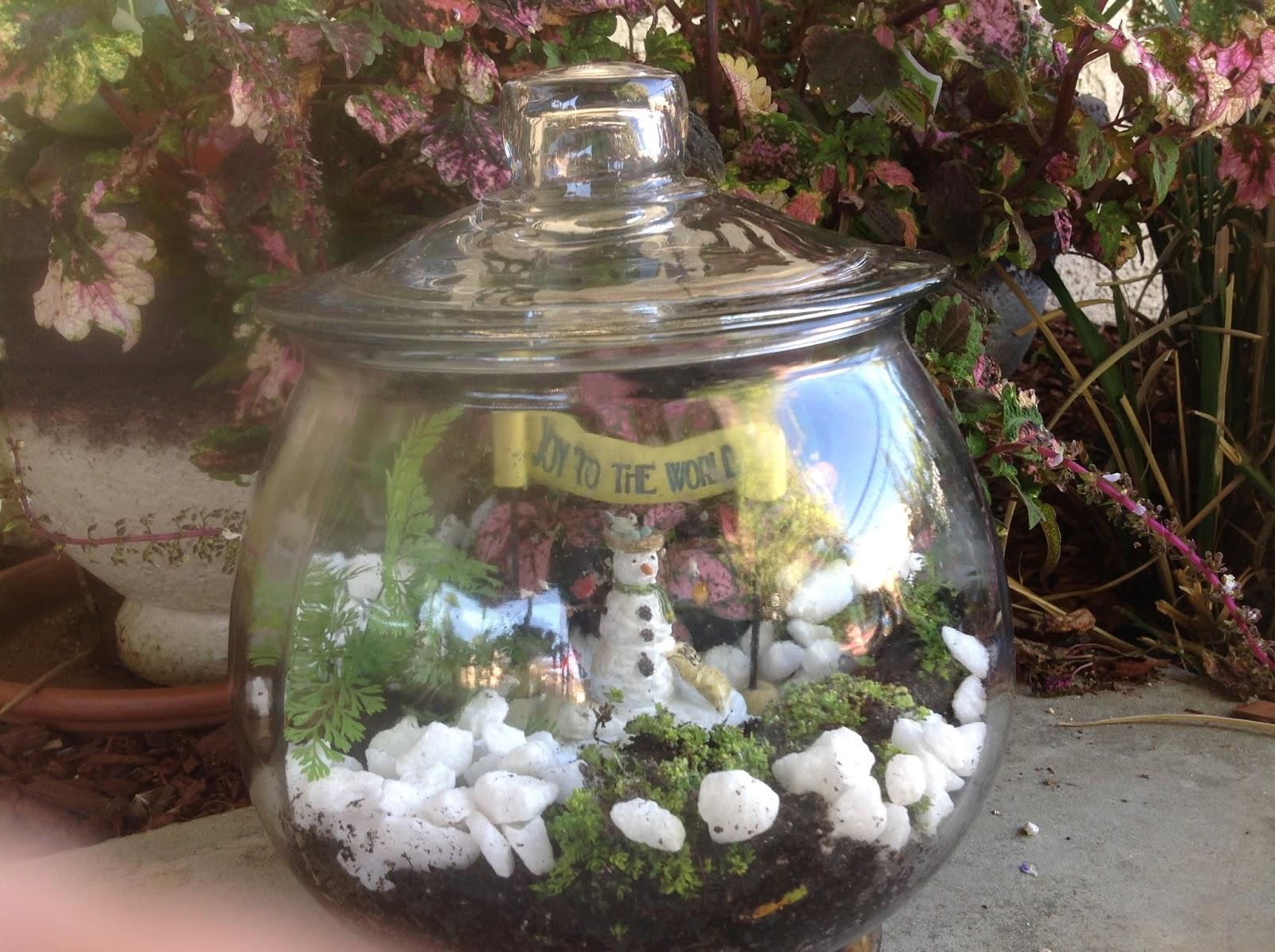 grandma u0027s enchanted fairy garden fairy garden class terrarium