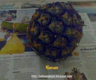 buah nanas petua atasi kulit bersisik