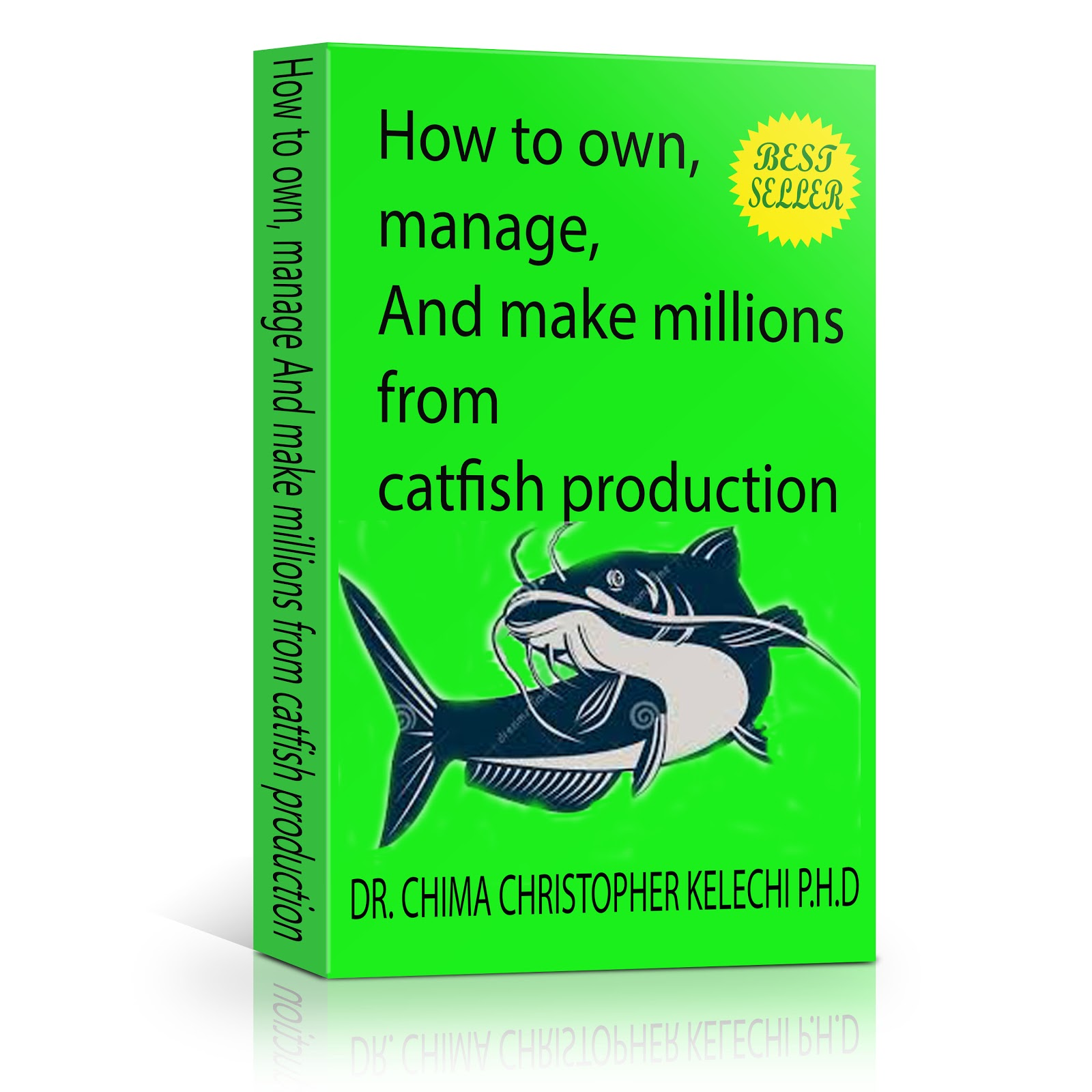 How to own, manage, and make millions from catfish farming business ...