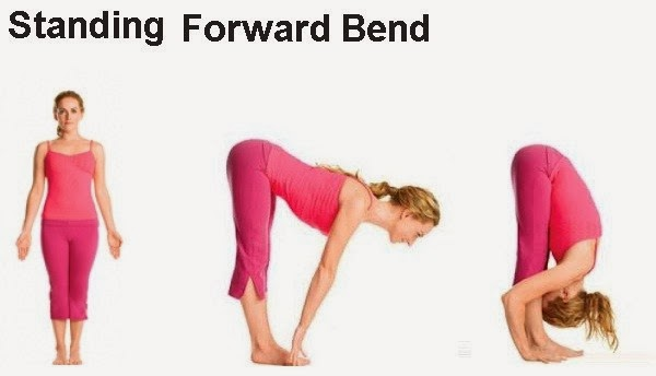 a beautiful woman doing Standing Forward Bend
