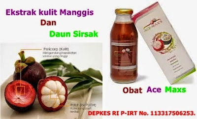 http://acemaxs44.com/obat-tradisional-rematik/