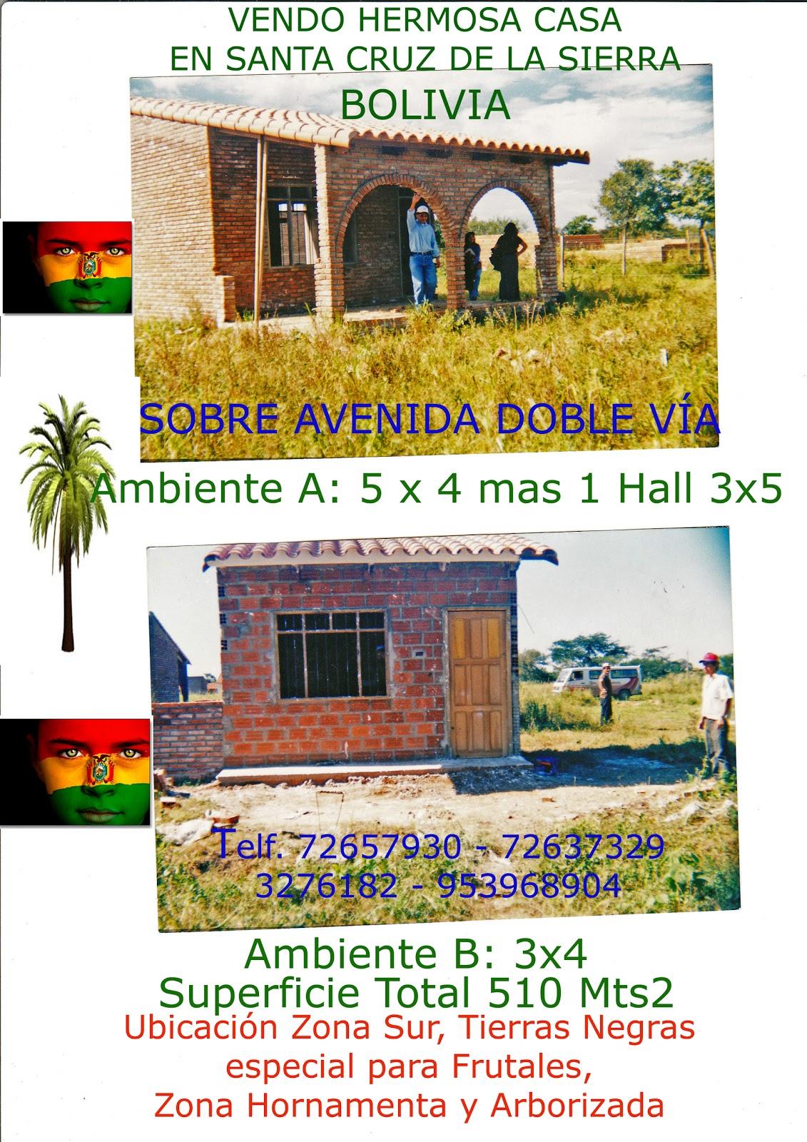 Casas y terrenos en santa cruz bolivia mayo 2011 for Casa la mansion santa cruz bolivia
