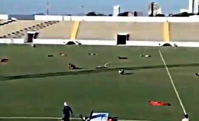 蜂に襲われるサッカー選手
