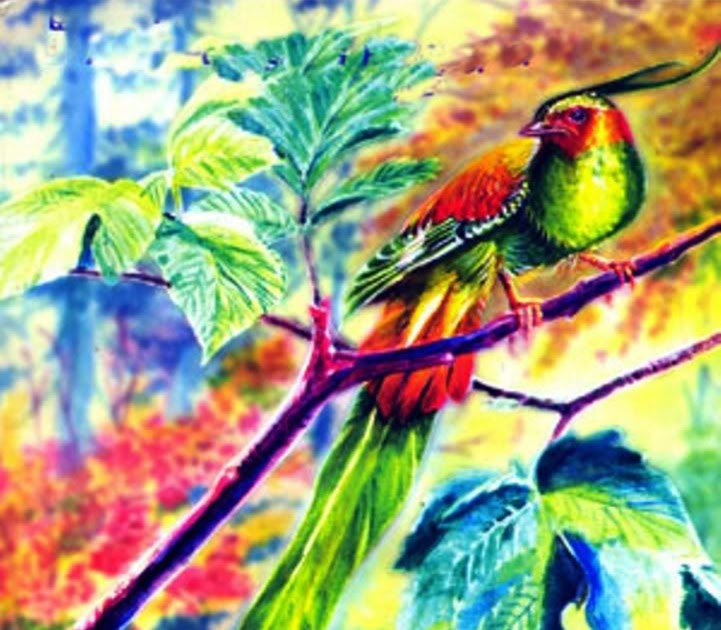 adarna bird summary essay Summary of ibong adarna him that bird adarna was the one living being in the world and help me write a short essay on why this story.