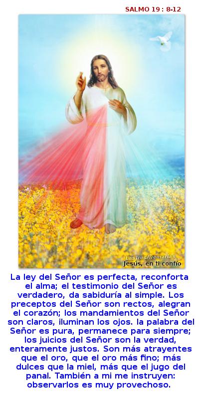 divina misericordia con el salmo 19:8-12