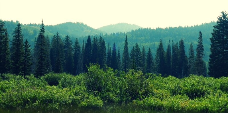 Sliver Lake Utah