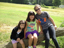 My 3 Favorite Girls-My Granddaughters