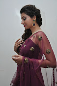 Hamsa Nandini at Bengal tiger audio-thumbnail-20