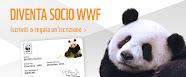 DIVENTA SOCIO WWF