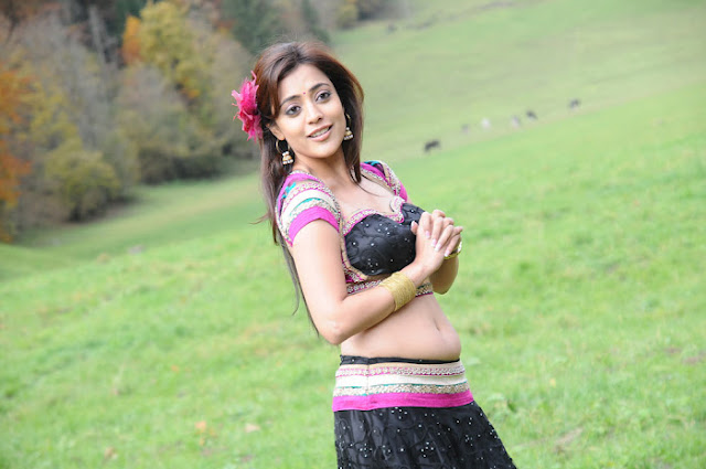 Tollywood New Actress Nisha Agarwal Spicy Photos