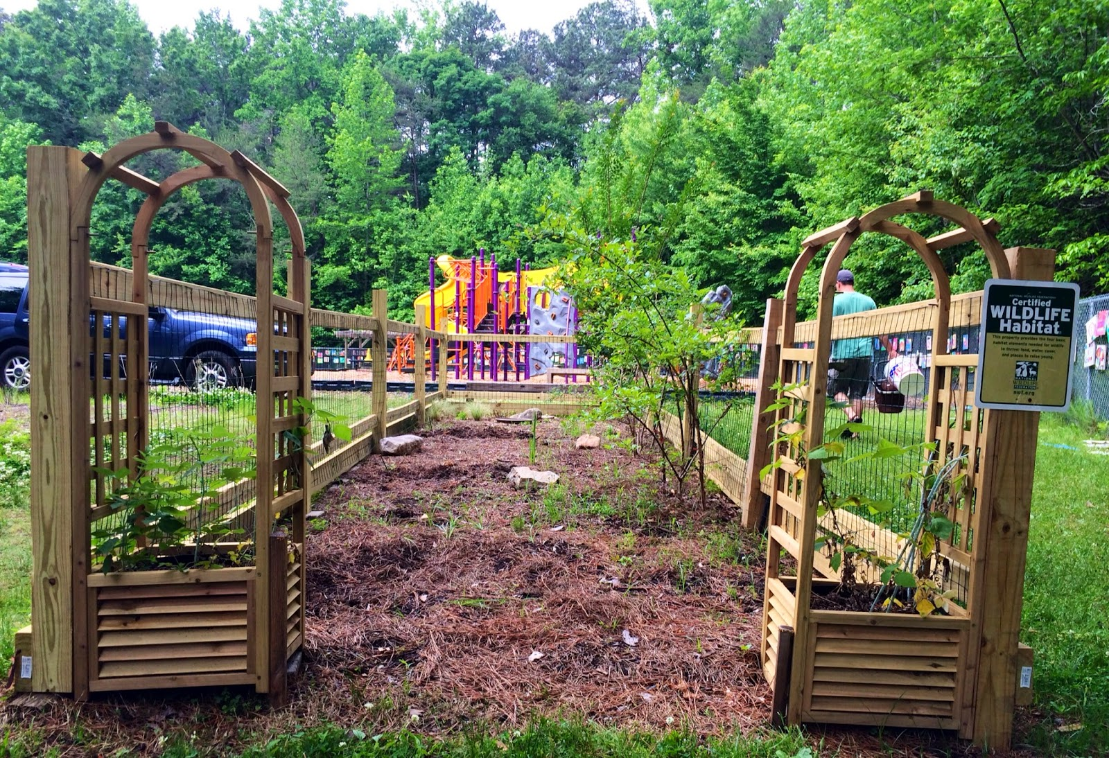 dunwoody daze chesnut u0027s certified wildlife habitat garden
