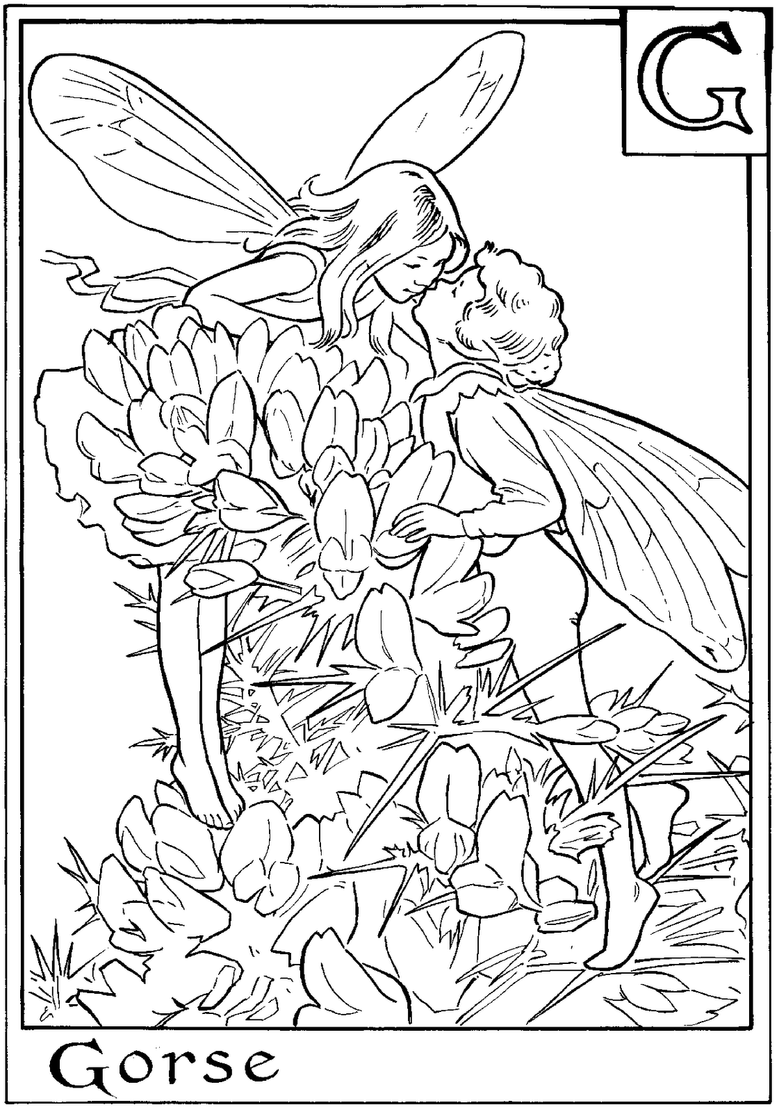 Alvarium Nostrum K 246 Nyvkapt 225 R T 220 Nd 201 Rek And The Island Princess Coloring Pages