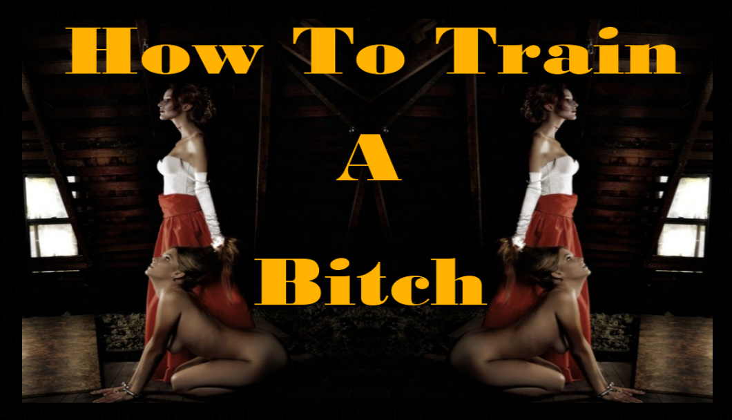 How To Train a Bitch