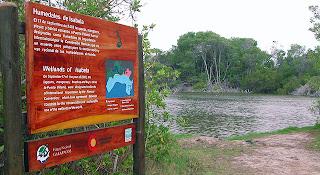 The Wetlands, Isabela Island, Galapagos