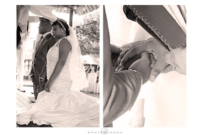 DK Photography Ash12 Alethea & Ashley's Wedding in Welgelee Wine Estate in Cape Wine Lands  Cape Town Wedding photographer