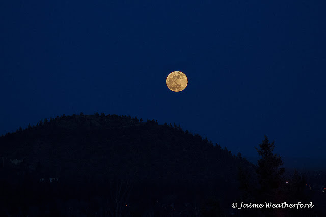 Jaime Weatherford Supermoon Bend Oregon Awbrey Butte
