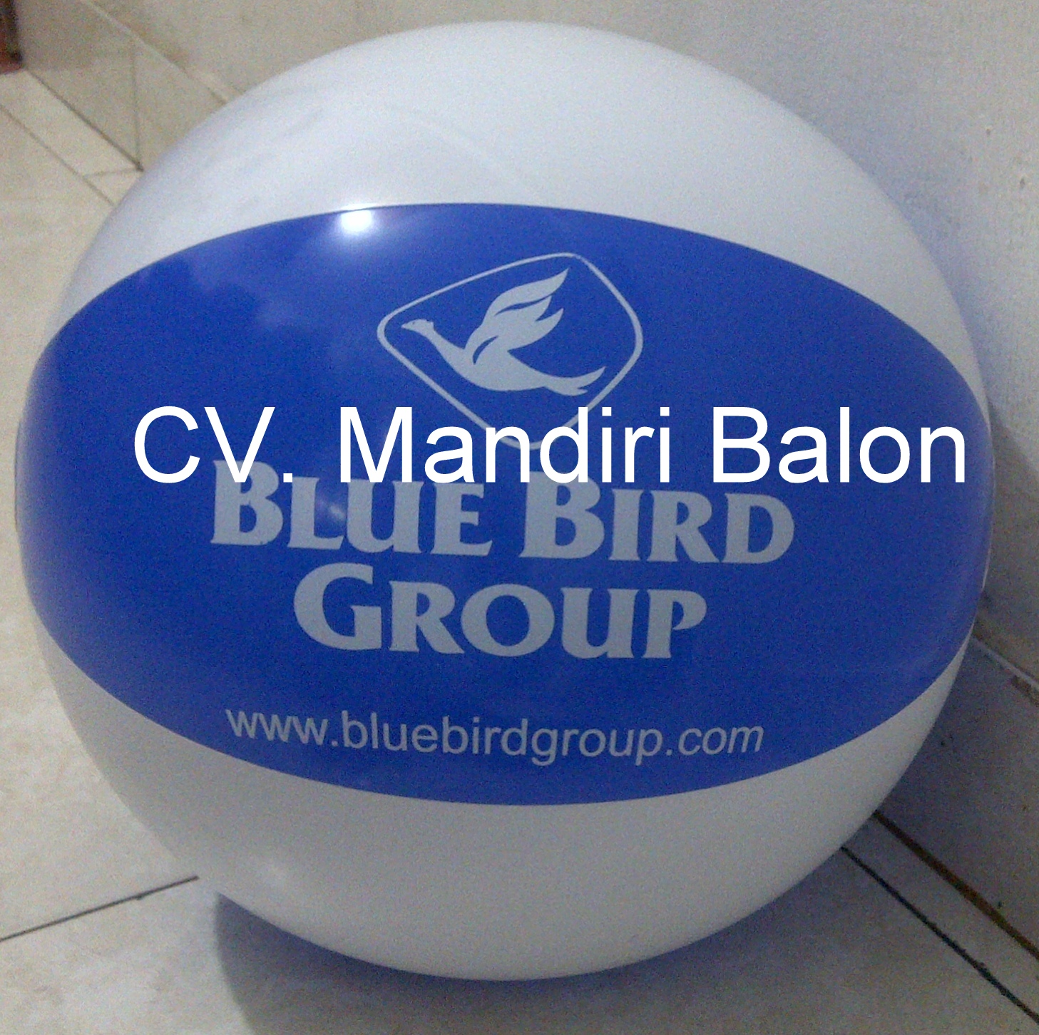 Bola Pantai Blue Bird Group
