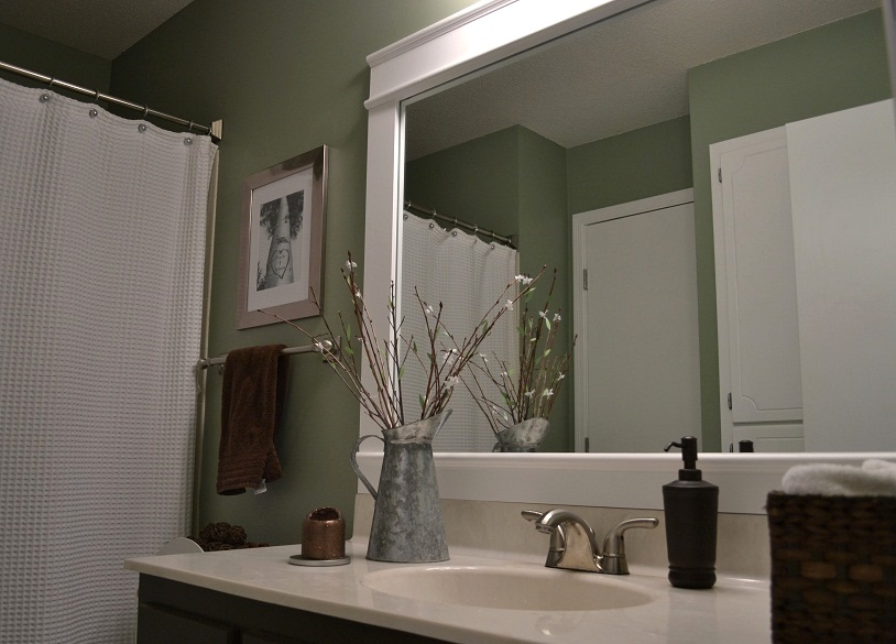 Dwelling cents bathroom mirror frame for Bathroom wall mirrors