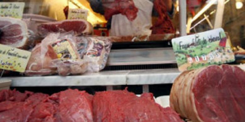 Investigasi Skandal Daging Kuda Dikritik