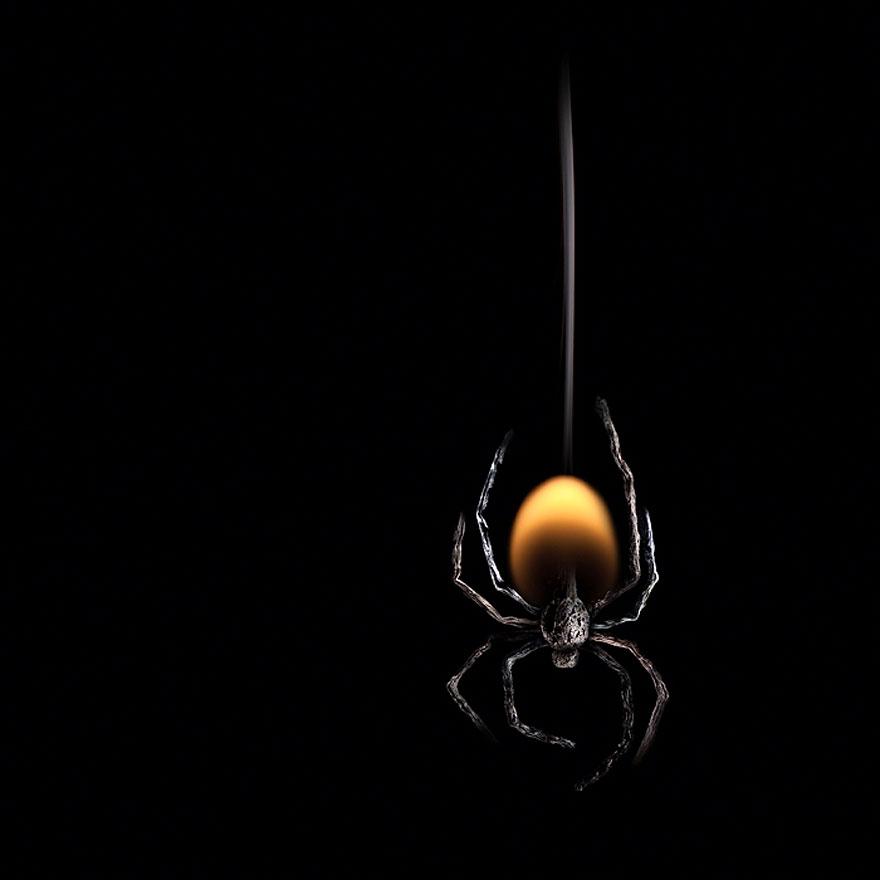 araña formada con fuego y cerillas