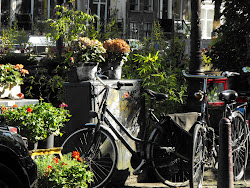 El descanso de las bicicletas