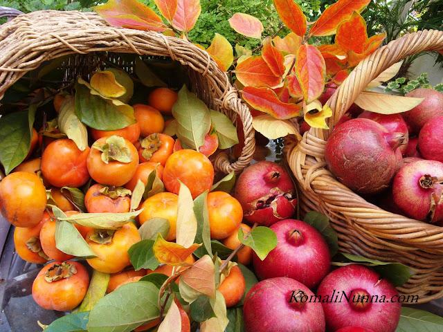 entertaining from an ethnic indian kitchen  autumn harvest