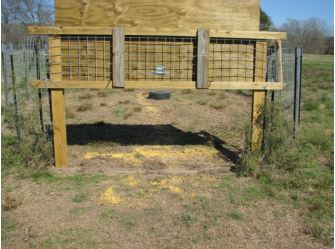 how to build an effective hog trap