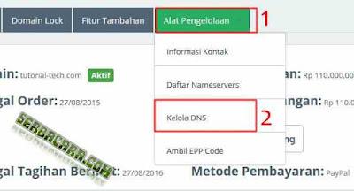 Kelola Domain DNS