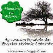 SoloArboles-AEBMA