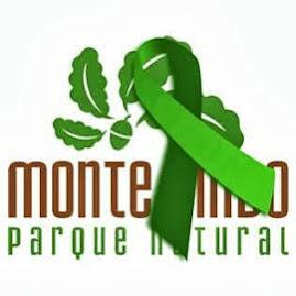 Salvemos o Monte Pindo