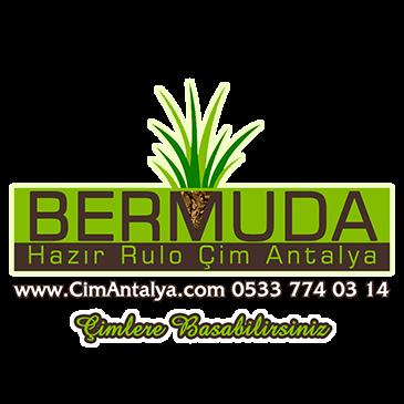 Çim Antalya | 05337740314 Bermuda Hazır Rulo Çim Üretimi