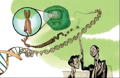 """Ilustração de """"A magia da Realidade"""", livro de Richard Dawkins"""