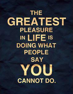 Pleasure in life