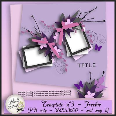 Mon nouveau Template en freebie Pv+template3