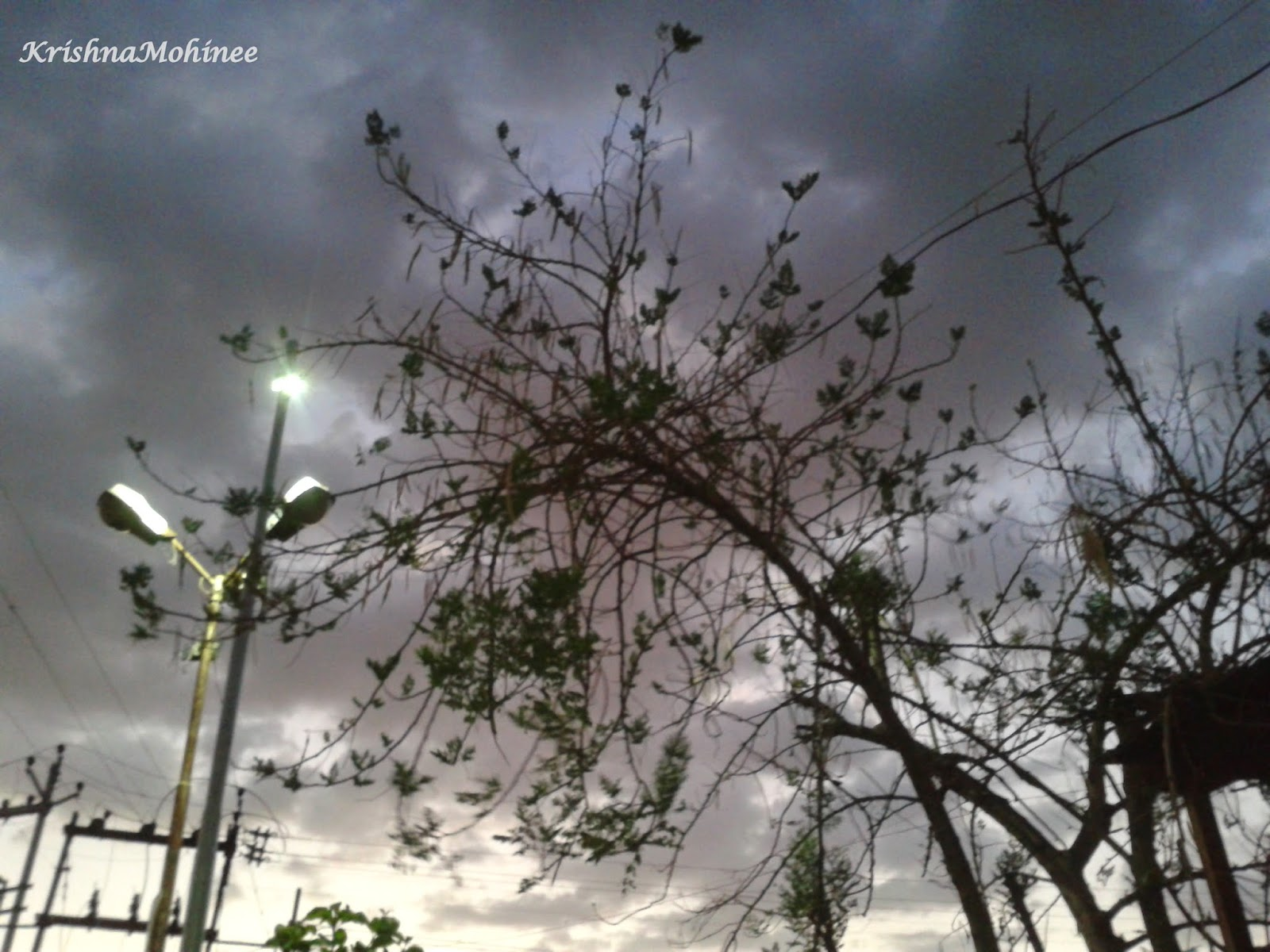 Image: Beauty of dark cloudy evening