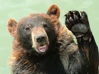 urso acenando adeus