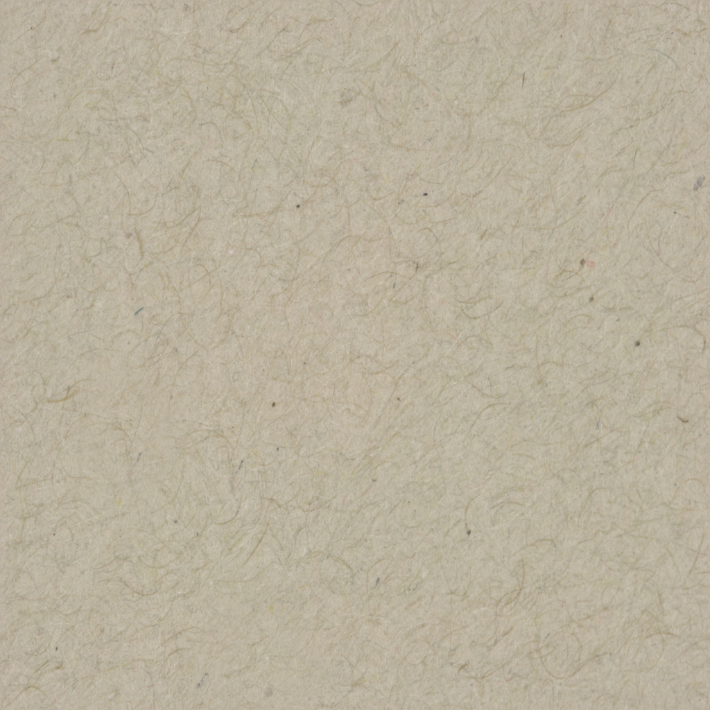 background white gallery  seamless background paper