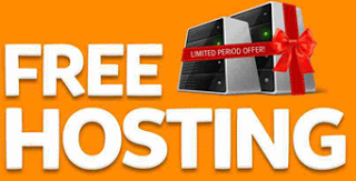 1 Year premium hosting for free