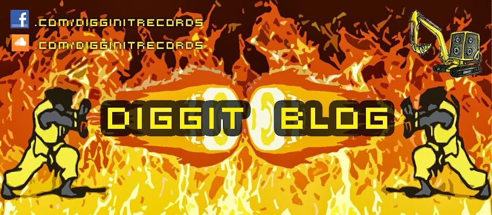 Diggit Bassline Blog