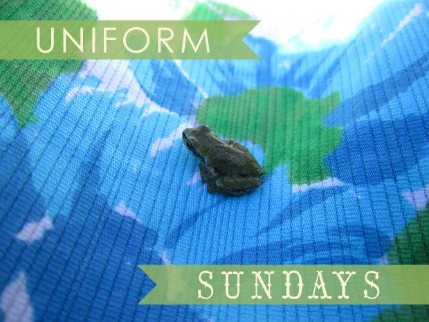 A Wayward Wind - Uniform Sundays - Frog