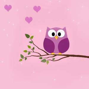 Pink Owl Shop Tirai Benang Impor