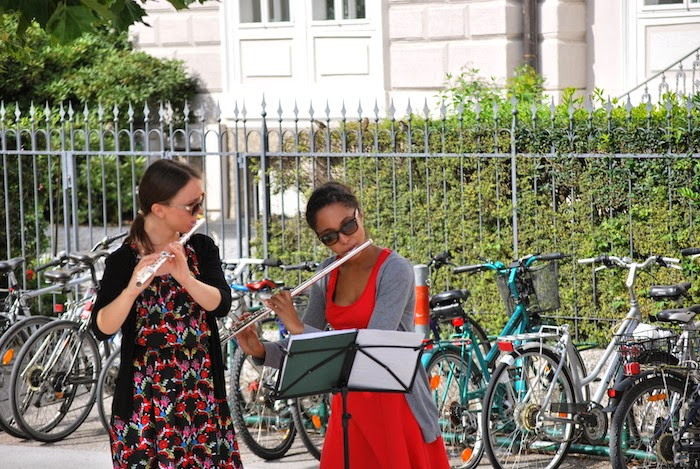 Salisbuorgo flautiste